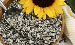 Можно ли кормящей маме есть семечки при гв