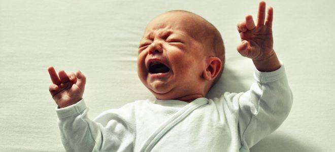 Как понять, доедает ли ваш ребенок