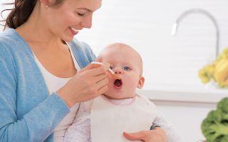 Как начать давать прикорм ребенку не навредив его здоровью