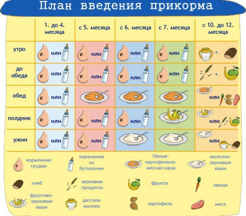 таблица прикорма грудного ребенка
